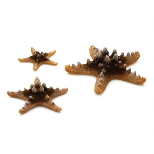 Biorb Sea Stars Natural